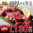 宮崎県産 和牛 肉厚 特選 ハラミ サガリ 100g バーベキューセット バーベキュー 肉 セット BBQ bbq 肉 セット 焼肉 お…