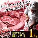【送料無料】新鮮国産豚上ハラミ たっぷり500g×2パック 計1kg 味付けなし タレセット付き(バーベキュー BBQ)業務用【あす楽対応】