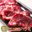超プレミア限定品 鹿児島黒牛 A5 最高ランク 黒毛和牛 極上 特選 ハラミ 500g 塩こしょう付き バーベキューセット 肉 …