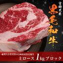 宮崎県産 黒毛和牛 サーロイン ブロック肉 1kg 和牛 国産 牛肉 ロース ステーキ 肉 サ...
