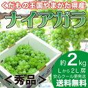 山形県産 ナイアガラ 2kg 秀品 ぶどう ブドウ 葡萄