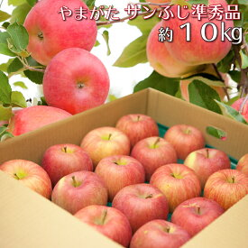 山形県産 りんご サンふじ 準秀品 10キロ 産地直送 林檎 リンゴ 10kg 送料無料