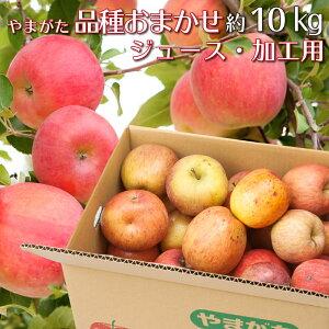 りんご 加工用 約10キロ 品種おまかせ 山形県産 ジュース用 訳あり 産地直送 林檎 リンゴ 10kg【10月下旬から11月上旬発送】