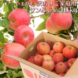 山形県産 りんご 訳あり サンふじ 10キロ ご家庭用 産地直送 林檎 リンゴ 10kg