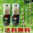 【送料無料】 【花粉対策】プロポリススプレーミント味(20ml) 2本 【RCP】