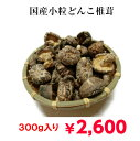 【送料無料!!】たっぷり300g入り!国産 小粒どんこ干し椎茸!見た目は可愛いですが、味や風味は本物です!! 干しし…