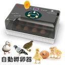 孵卵器 孵化器 鳥類 専用 孵卵 器 自動孵卵器 孵卵 器 インキュベーター 恒温器 鳥類専用ふ卵器 孵化器 自動転卵式 アヒル 鶏卵 アヒル…