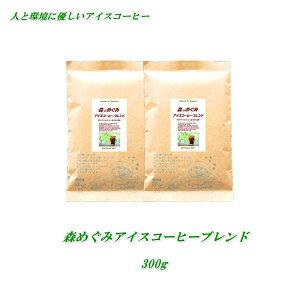 ◆森のめぐみのアイスコーヒーブレンド 300g ♪人と環境に優しいコーヒー♪【メール便送料無料】RA/FLO認証コーヒー豆100%【HLS_DU】安心・安全・焼きたて煎りたて美味しいコーヒー