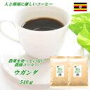 ◆無農薬・有機栽培原料100%コーヒー・ウガンダ  540g(約54杯分)【メール便送料無料】人と環境に優しいコーヒー…