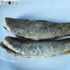 送料無料コマイ氷下魚生干し1kg(50尾前後)氷下魚(こまい)1kg前後焼いてお召し上がり下さい。お好みでお醤油やマヨネーズを♪生干し氷下魚