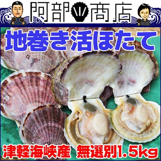 【送料無料】夏季限定 青森県 津軽海峡産 活ほたて貝 大中小サイズ無選別 1,5kg前後(10枚前後)外海 地巻き ホタテ 砂かんでますのでBBQ不可