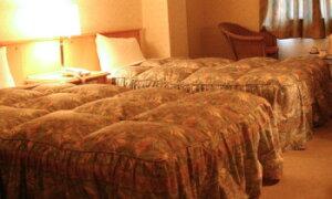 ホテルの羽毛ベッドカバー(フリルタイプ)をご家庭向けにもお届けしています◆本物の 一流ホテル・高級旅館仕様なのでフワッと軽く温かいハイグレードな仕上がり◆SDセミダブルサイズ◇