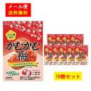 【メール便送料無料】三菱食品 かむかむ梅 10個セット