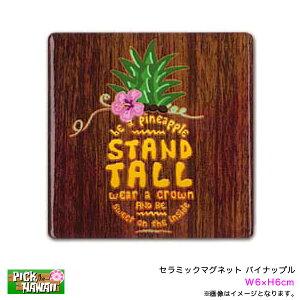 セラミックマグネット パイナップル W6×H6cm 磁石 インテリア ハワイアン雑貨 お土産 アメリカ PICK The HAWAII IH-MAG-CPN