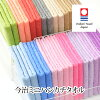 Imabari towel made in Japan [normal color] _ neon P201506