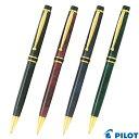 Pilot bg 500r1