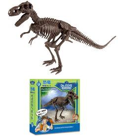恐竜発掘キット 夏休み 自由研究