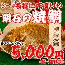 焼鯛3〜4名さま位の大きさ<焼き鯛6月上旬発送分>【長寿のお祝い・お食い初め祝膳に焼き鯛】
