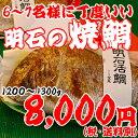 焼鯛6〜7名さま位の大きさ<焼き鯛5月上旬発送分>【長寿のお祝い・お食い初め祝膳に焼き鯛】