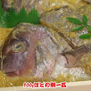 焼鯛専門店宝来のみそ漬け【鯛の1ピキ漬け(1kg〜1.1kgのタイ】
