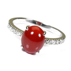 血赤珊瑚 指輪 リング プラチナ Pt900 無染色 SANSUI レディース 女性 ファッション アクセサリー ジュエリー 還暦祝い 珊瑚婚式 3月誕生石