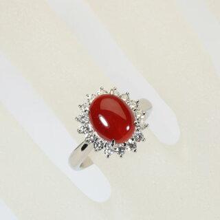 血赤珊瑚リング指輪Pt900プラチナ無染色SANSUI天然sango本さんごコーラル宝石サンゴ専門店