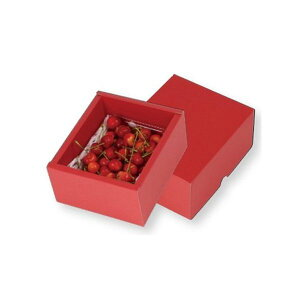 【屋号必須】ヤマニパッケージ さくらんぼ箱 L-2420 フルーツトレー500g1P赤 150×180×95mm 1ケース100枚入り