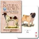 【54種の犬たちが大集合!!】トランプ ナチュラル・ワールド 世界の犬