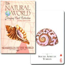 【美しい様々な貝】トランプ ナチュラル・ワールド 世界の貝