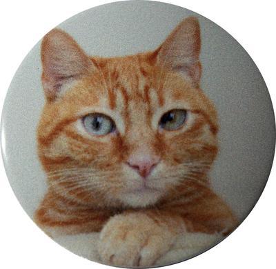 【送料無料】 車 アクセサリー シエンタ SIENTA スタートボタンカバー ・猫・ えっ!貼るだけ?かんたん取付 プッシュ スタート スイッチ カバー Push Start Switch Accessory for TOYOTA ・猫・ TOYOTA 車用