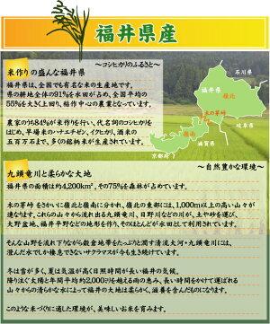 福井県について1
