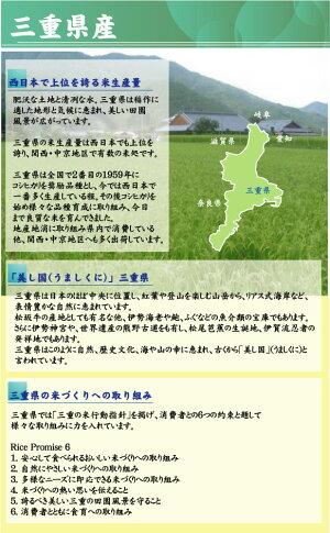 無洗米三重県産コシヒカリ3