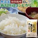 【キャッシュレス5%還元】無洗米 特別栽培米 新潟県魚沼産コシヒカリ 10kg 5kg×2袋 令和元年産 1年産 【送料無料】…