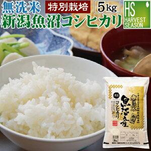 無洗米特別栽培米魚沼産コシヒカリ5kg