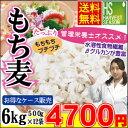 【お得なまとめ買い ケース販売】管理栄養士オススメ!βグルカン豊富な♪もち麦(大麦)計6kg(500g×12袋)【送料無料】…