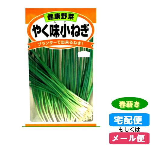【メール便対応】種子やく味小ねぎ)春まき(春薪・たね・タネ):02P03Dec30