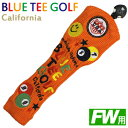Blueteegolf-fwo
