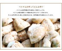 いもの花咲いた(本格芋焼酎)【ギフトプレゼント】【酒】【クセなし白芋コガネセンガンの原種】