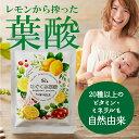 【公式】はぐくみ葉酸 通常購入 1袋90粒入り 葉酸 妊婦 妊娠 鉄分配合 はぐくみプラス公式