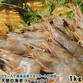 送料無料 天使の海老1kg ニューカレドニア産 ブルーシュリンプ 30〜40尾 海産物 海鮮 お取り寄せグルメ 福岡 土産 お土産