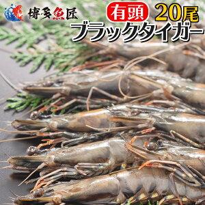 送料無料 有頭ブラックタイガーエビ(20尾)冷凍 海老 海産物 海鮮 おせち お取り寄せグルメ 贈り物 業務用