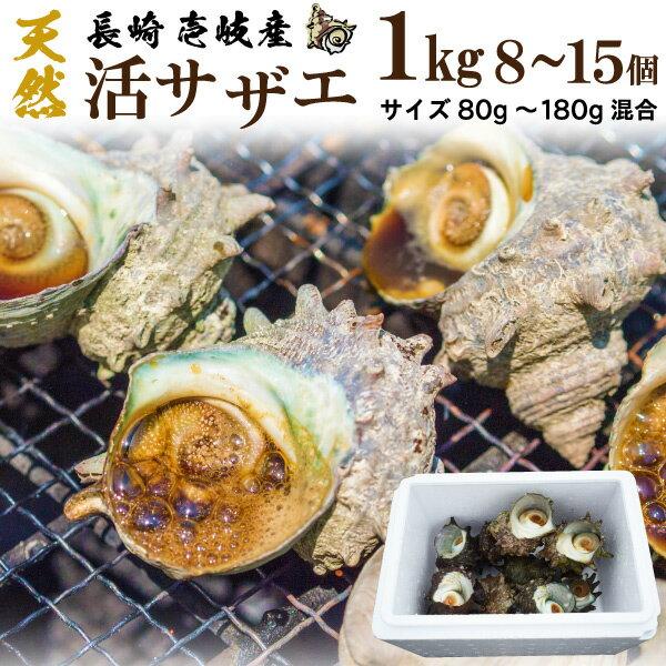 活サザエ 刺身 天然 鮮度抜群 冷蔵 1kg(8〜15個) 九州 壱岐対馬産 送料別
