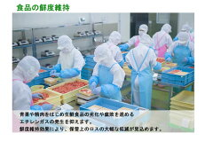 【空気浄化装置】ReSPR(レスパー)FLEX(ReSPR3001)/食品の鮮度維持