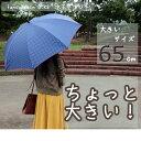 【期間限定ポイント10倍】[婦人傘] fancy rain O:KS 水玉プリント65cmジャンプ傘 [レディース傘 レディス傘 女性用 母の日 プレゼント 敬老の日 ギフト オーバーロック]