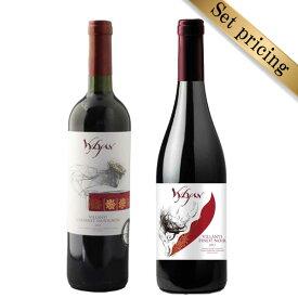【ギフトBOX】赤ワイン750ml 2本セット カベルネソーヴィニョン ピノノワール Cabernet Sauvignon/Pinot Noir ハンガリー ヴィラーニ地方 ヴィリアンワイナリーが造る人気品種 ハンガリーワイン wine hungary wine【送料無料】