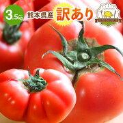 うきの訳ありとまと3.5kg以上生産量日本1位の熊本県からお届けします。農事組合法人うき協連