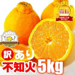 たっぷり4kg!さらに1kgおまけの合計みかん5kg送料無料!(沖縄・東北・北海道・一部離島を除く)熊本県産訳ありみかん産地厳選ご家庭向け訳ありミカンです。期間限定販売!