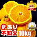 不知火(訳ありデコポン) 10kg 熊本県産 ご家庭向け訳ありデコポンです。日本一の産地熊本から直送!低農薬栽培で見た…
