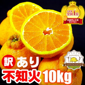 不知火(訳ありデコポン) 10kg 熊本県産 ご家庭向け訳ありデコポンです。日本一の産地熊本から直送!低農薬栽培で見ためこそ悪いものの、味は一級品!訳あり 不知火 熊本 ミカン 熊本 デコ