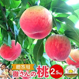 クーポン配布中!【送料無料】贈答用 徹さんのもも! 2.5kg 夏のフルーツギフトといえば桃!お中元はお決まりですか?徹さんのモモはハウス栽培なので農薬も少なめで安心!熊本県産の「